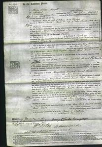 Court of Common Pleas - Mary Buck, Elizabeth Arnold, Sarah Arnold and Ann Courtman-Original Ancestry