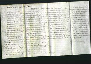 Court of Common Pleas - Caroline Cole and Selma Jane Barnes-Original Ancestry
