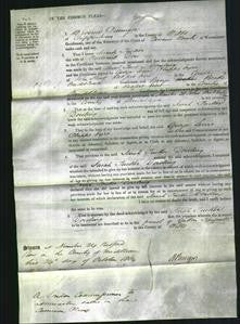 Court of Common Pleas - Sarah Tucker Dowling-Original Ancestry