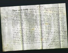 Deed by Married Women - Sarah Wood, Jane Wood and Martha Wood-Original Ancestry