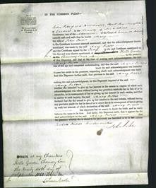 Court of Common Pleas - Mary Peters-Original Ancestry