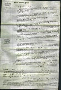 Court of Common Pleas - Catherine Whittard-Original Ancestry