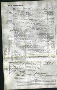 Court of Common Pleas - Annie Mayaffre Shanks-Original Ancestry
