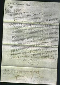 Court of Common Pleas - Anne Goldney-Original Ancestry