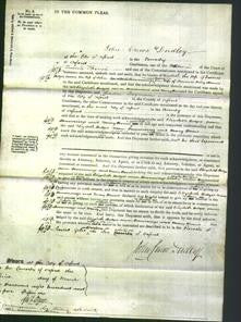 Court of Common Pleas - Elizabeth Hedges, Anne Hemmings and Mary Harris-Original Ancestry