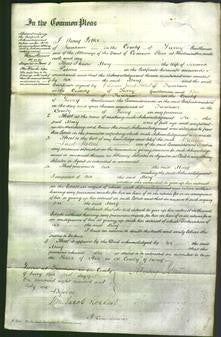 Court of Common Pleas - Mary Palmer-Original Ancestry