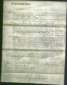 Court of Common Pleas - Ann Ingo-Original Ancestry