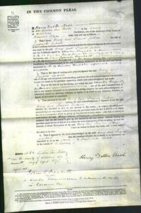 Court of Common Pleas - Mary Ann Frances Jackson-Original Ancestry