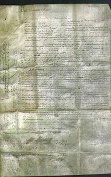 Court of Common Pleas - Ann Greenaway-Original Ancestry