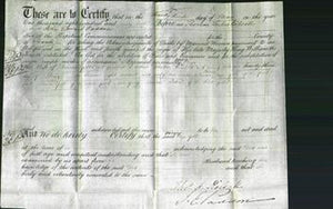 Court of Common Pleas - Ann Bennett Anley-Original Ancestry