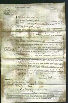 Court of Common Pleas - Jane Woodcock Thomas-Original Ancestry