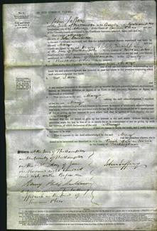 Court of Common Pleas - Mary Hensman-Original Ancestry