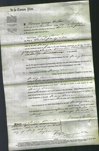 Court of Common Pleas - Mary Ann Padfield-Original Ancestry
