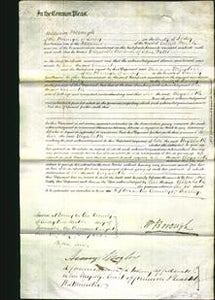 Court of Common Pleas - Elizabeth Watts-Original Ancestry