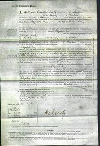 Court of Common Pleas - Elizabeth Ann Corney-Original Ancestry