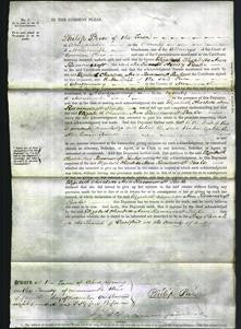Court of Common Pleas - Elizabeth Charlotte Ann Ravenscroft Peake-Original Ancestry