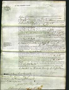 Court of Common Pleas - Elizabeth Beeton-Original Ancestry