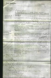 Court of Common Pleas - Elizabeth Greenwood-Original Ancestry