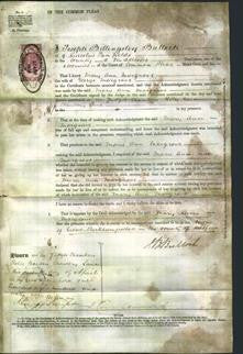 Court of Common Pleas - Mary Ann Margrave-Original Ancestry