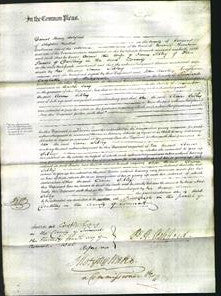 Court of Common Pleas - Ann Sibley-Original Ancestry