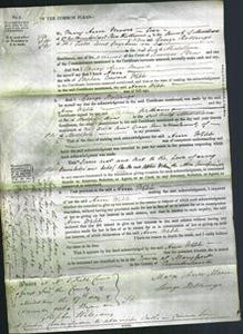 Court of Common Pleas - Ann Webb-Original Ancestry