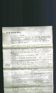 Court of Common Pleas - Mary Barber-Original Ancestry