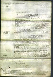 Court of Common Pleas - Elizabeth Smith-Original Ancestry