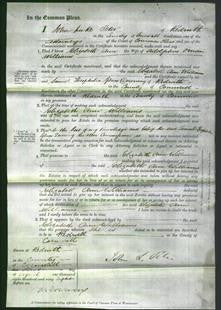 Court of Common Pleas - Elizabeth Ann Williams-Original Ancestry