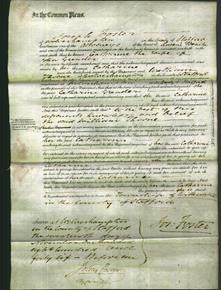 Court of Common Pleas - Catharine Greader-Original Ancestry