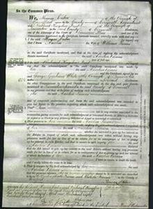 Court of Common Pleas - Amelia Parsons-Original Ancestry