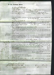 Court of Common Pleas - Elizabeth Reynolds-Original Ancestry
