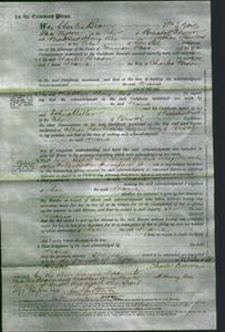 Court of Common Pleas - Maria Brown-Original Ancestry