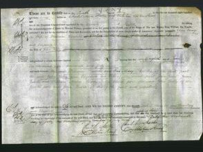 Deed by Married Women - Ann Mary Doubell and Elizabeth Tulley-Original Ancestry
