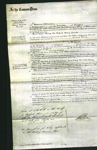 Court of Common Pleas - Mary Smith-Original Ancestry