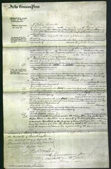 Court of Common Pleas - Elizabeth Wadley-Original Ancestry