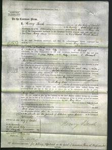 Court of Common Pleas - Mary Ann Sands-Original Ancestry