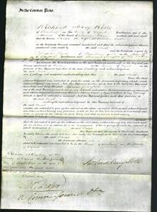 Court of Common Pleas - Sarah Butler-Original Ancestry