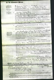 Court of Common Pleas - Mary Ann Sanderson-Original Ancestry
