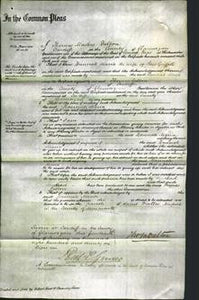 Court of Common Pleas - Hannah Maria Griffiths-Original Ancestry