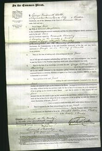 Court of Common Pleas - Jane Neighbour-Original Ancestry