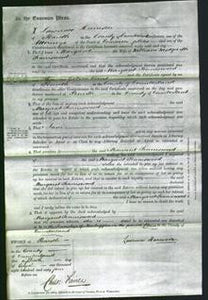 Court of Common Pleas - Margaret Tinniswood-Original Ancestry
