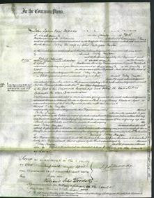 Court of Common Pleas - Betsy Willerton Hayton-Original Ancestry