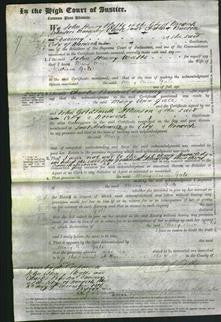 Court of Common Pleas - Mary Ann Gale-Original Ancestry