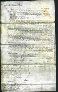 Court of Common Pleas - Mary Wilkinson-Original Ancestry