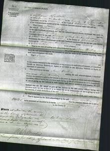 Court of Common Pleas - Ann Walter-Original Ancestry