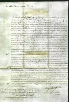 Court of Common Pleas - Jane Harker-Original Ancestry
