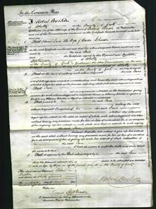 Court of Common Pleas - Jane Johnson-Original Ancestry