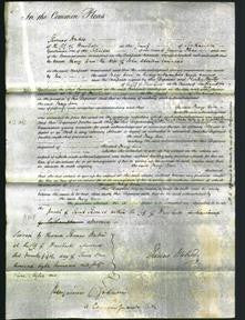 Court of Common Pleas - Mary Edwards-Original Ancestry