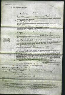 Court of Common Pleas - Eliza Price-Original Ancestry