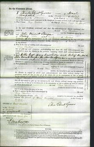 Court of Common Pleas - Eliza Christine Jagger-Original Ancestry